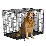 wire kennel