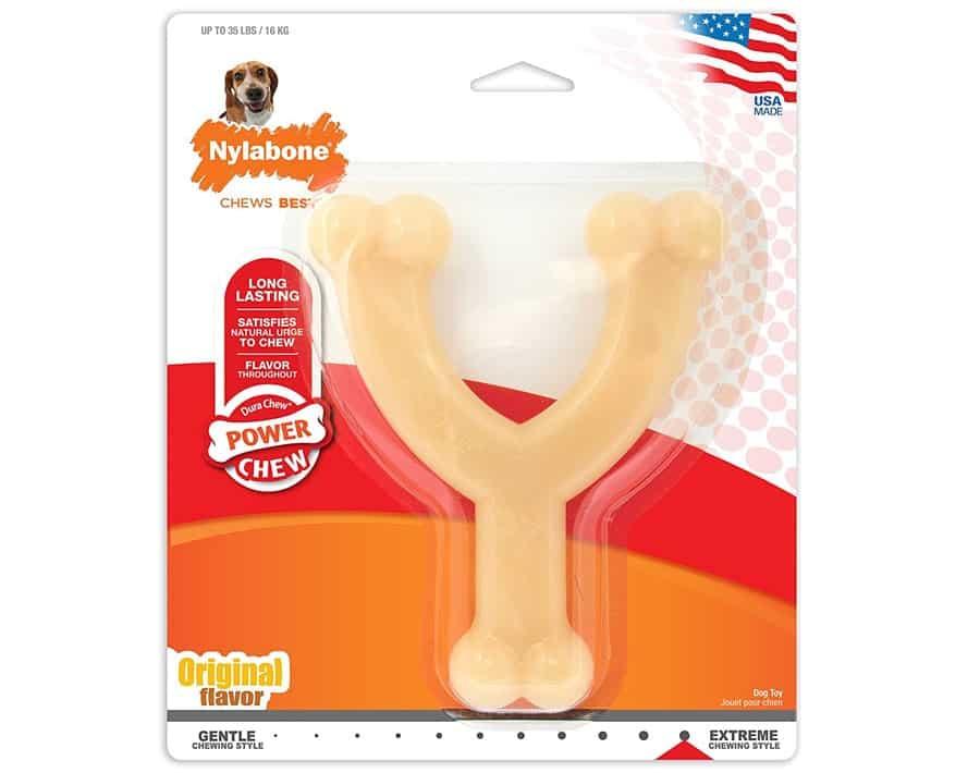 nylabone dog toy