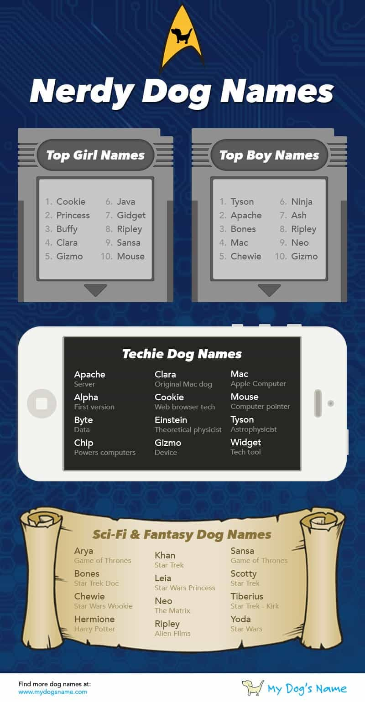 nerdy dog names infographic
