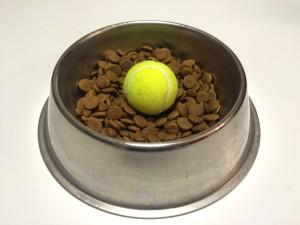 dog-ball-dish