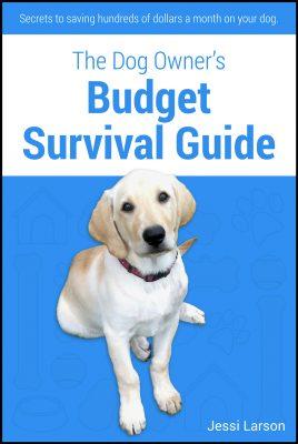 BudgetSurvivalGuide copy