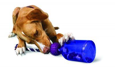 Dog Puzzle Toys - PetSafe