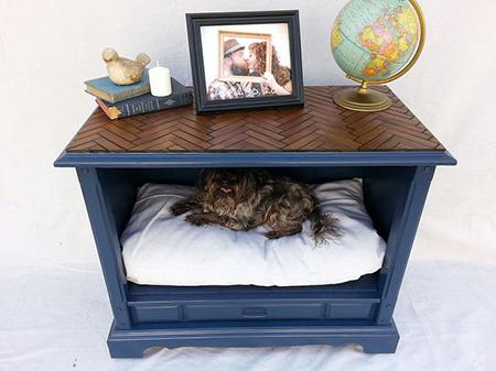 dog bed furniture