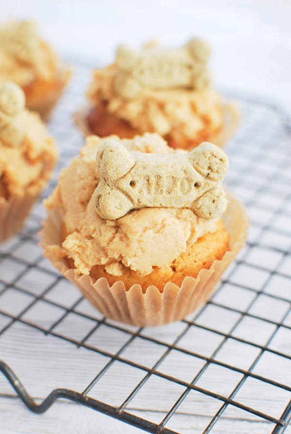 10 Dog Cupcake Recipes Your Pup Will Love