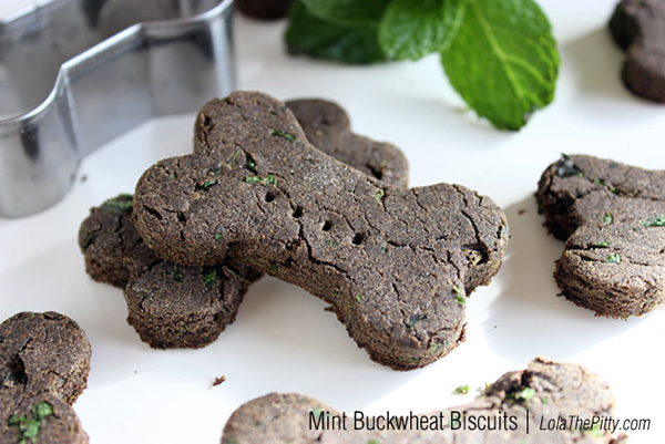9 Minty Fresh Dog Treat Recipes You Need For Your Dog's Breath