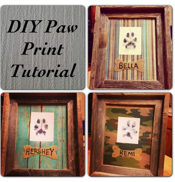 10 Dog Craft Projects That Are Easier Than You Think