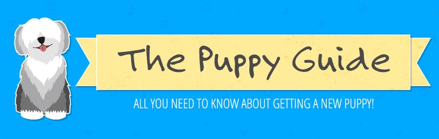 puppy guide header