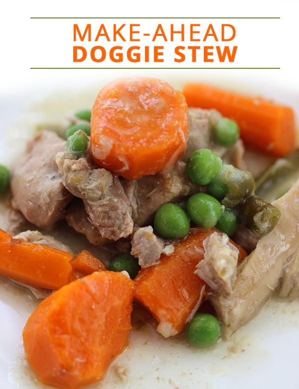 10 Homemade Dog Food Recipes Every Dog Mom Should Know