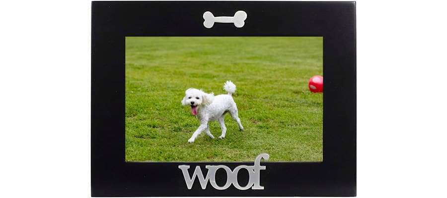poodle picture frame