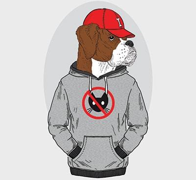 rap dog names - dog rapper
