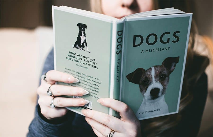 reading book about dogs