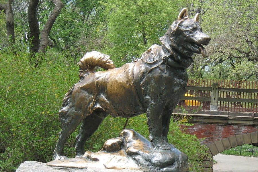 famous dog names - balto