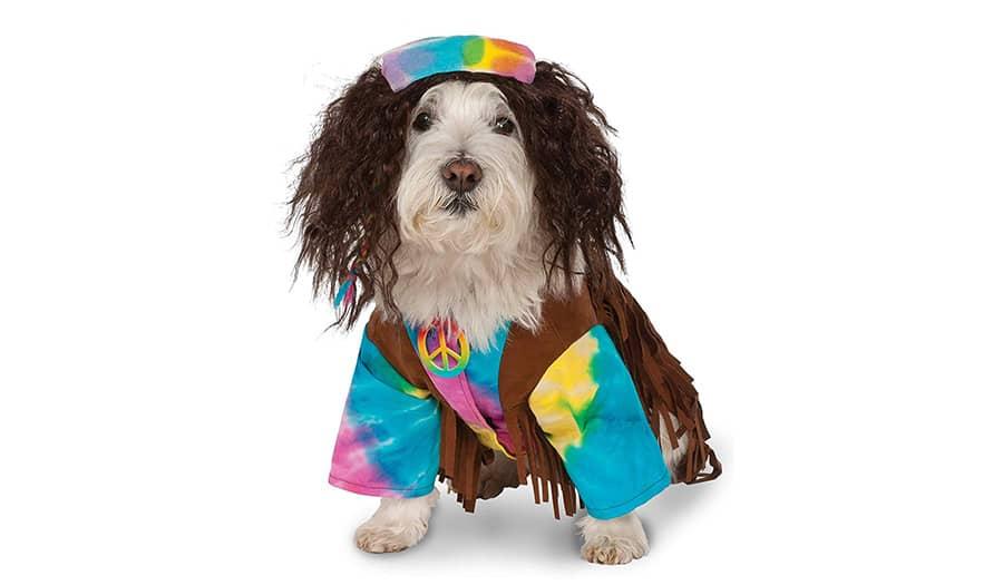 Hippie dog names - hippie dog
