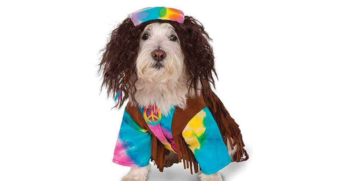 hippie dog names