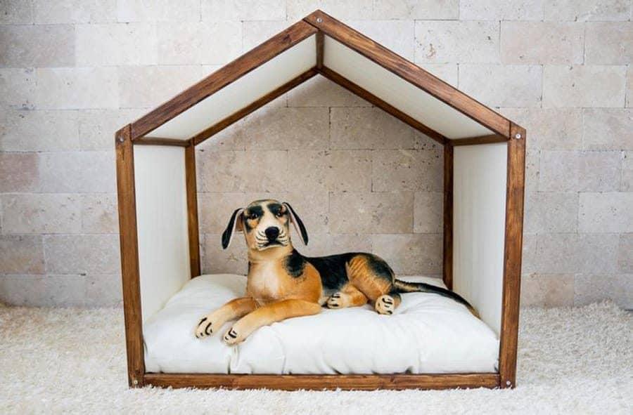 Pine Dog House