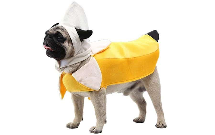 Dog Banana Costume
