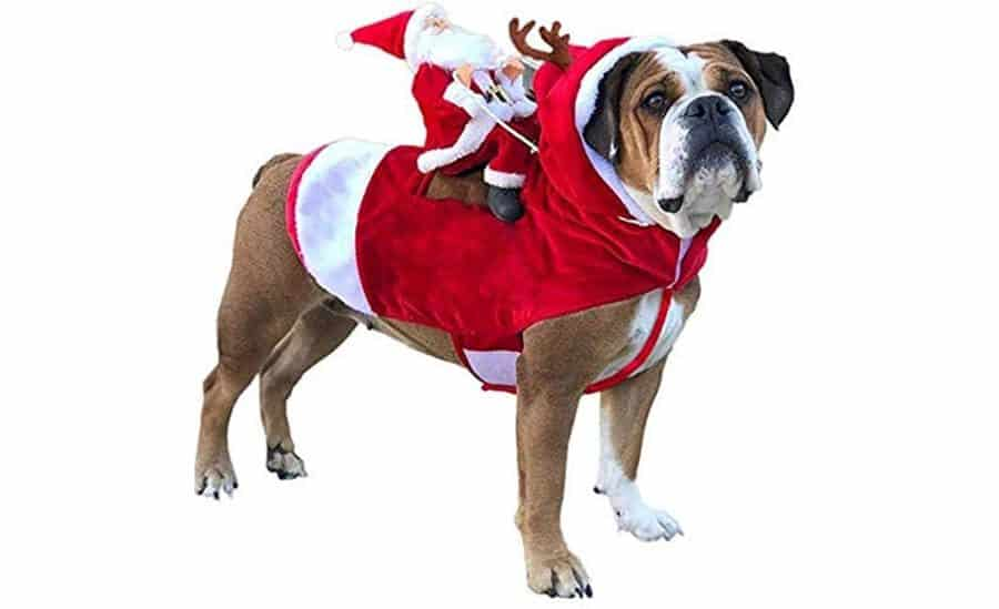 Santa Clause Dog Costume