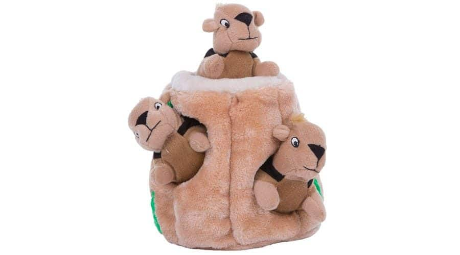hide and seek dog toy