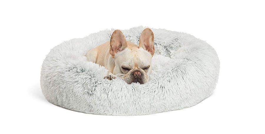 Cuddly dog bed