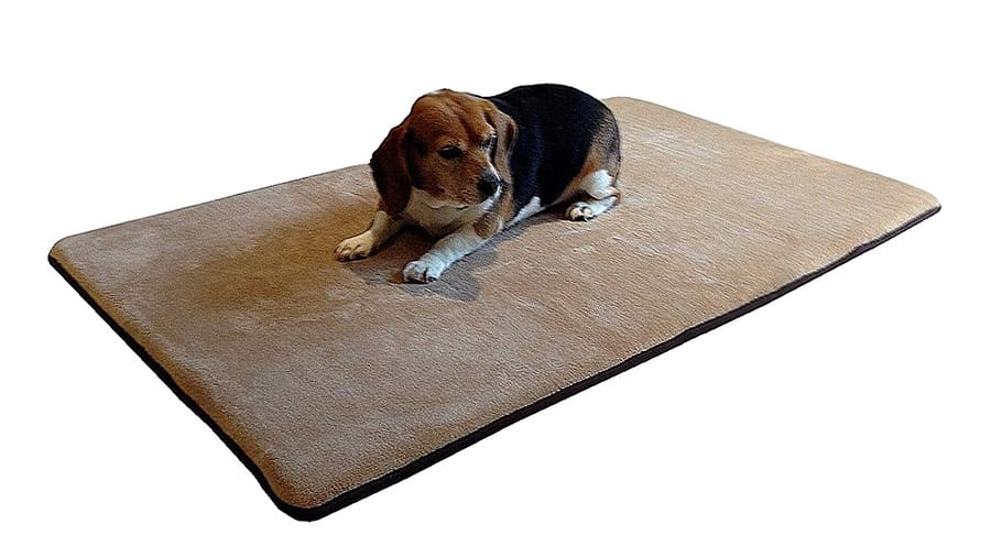 Premium dog bed