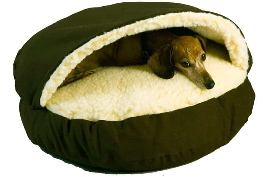 snoozer cave bed