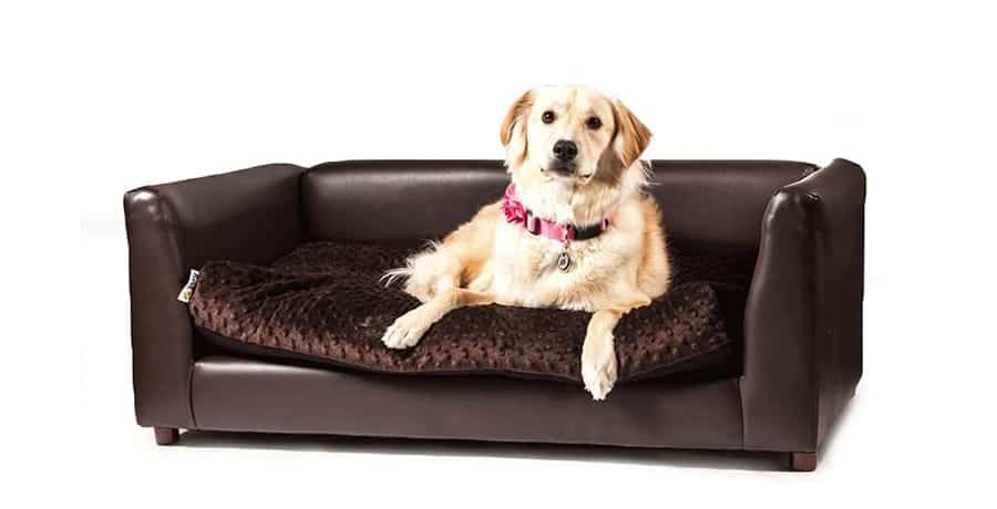 Sophisticated dog bed