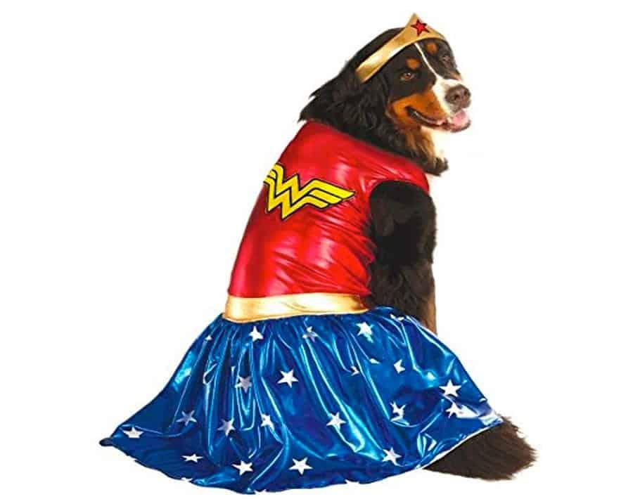 wonder woman dog