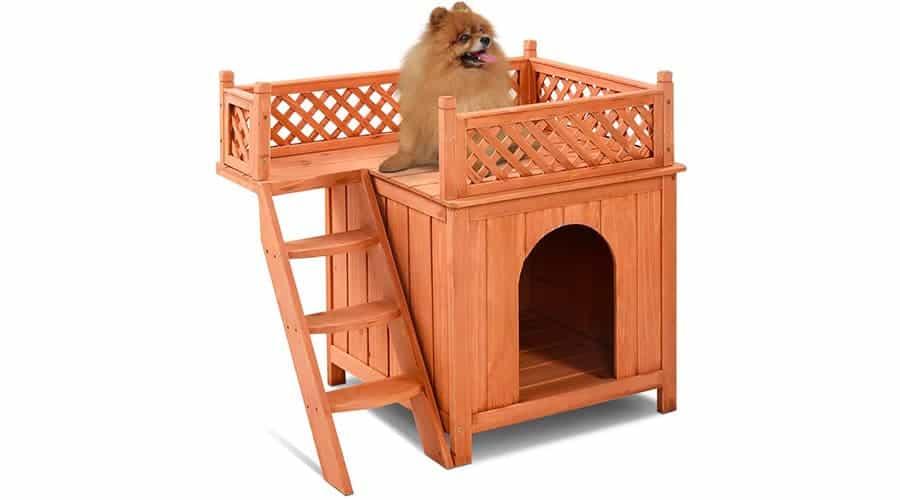 fir dog house
