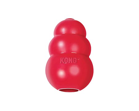 Best Toys for Great Danes - KONG