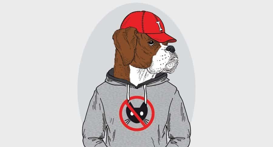 nombres de perros de rap - rapero de perros