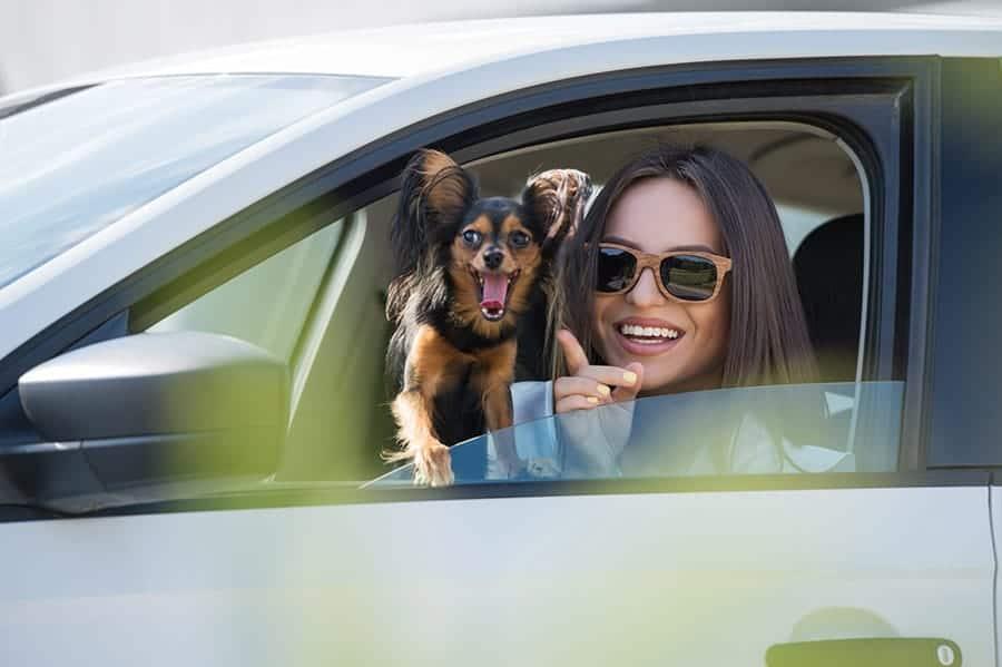 nombres de coches para perros - mujer con perro en coche