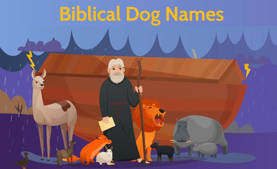 biblical dog names - noah's ark illustration